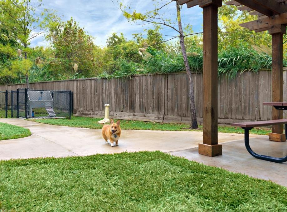 Dog Park at Listing #144208