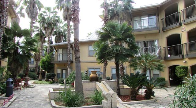 Niche Apartments San Antonio TX