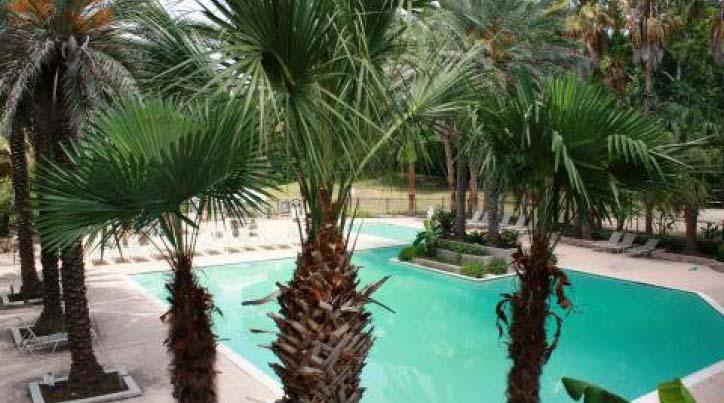 Pool at Listing #138895