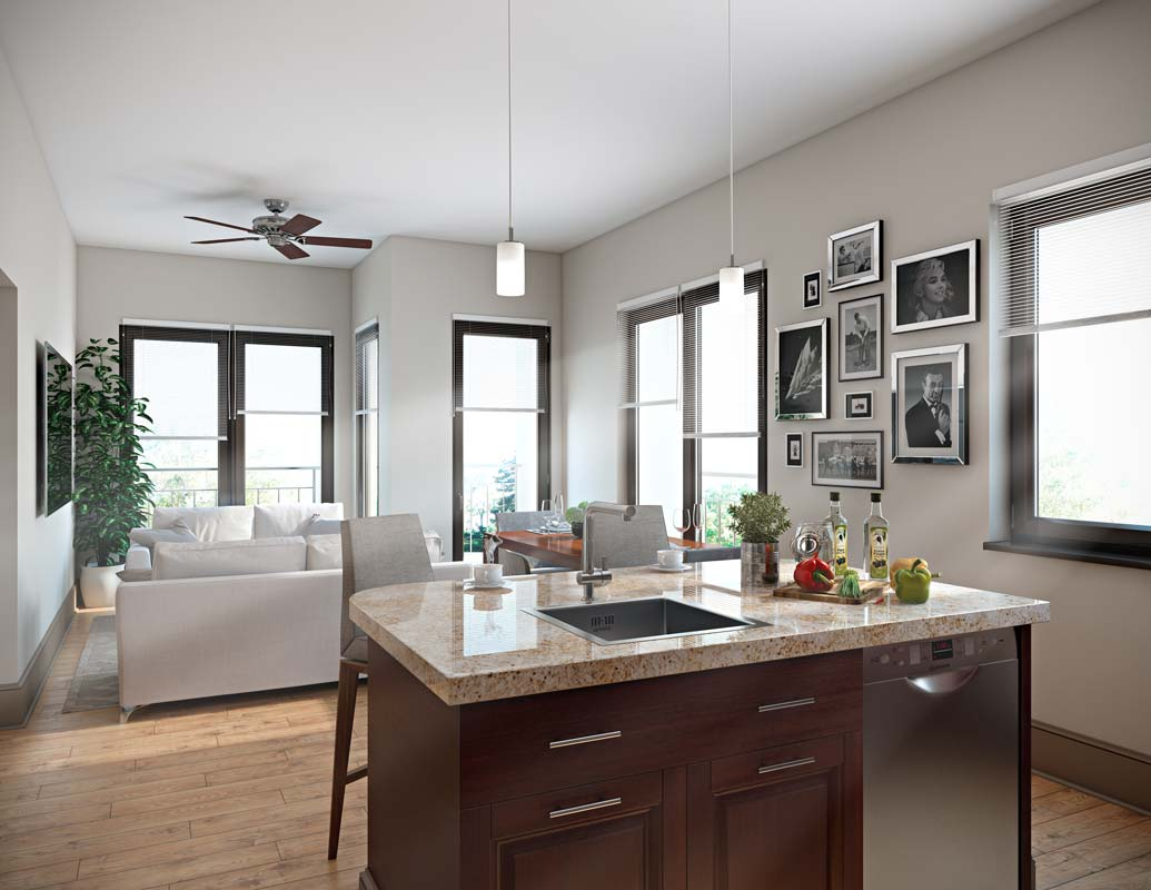Living/Kitchen at Listing #250202