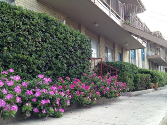 Lawnwood Apartments San Antonio TX