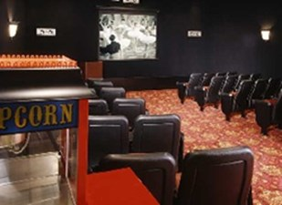 Theater at Listing #144887