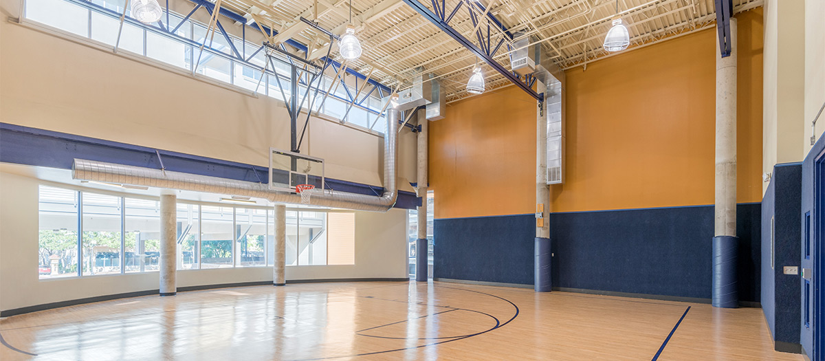 Basketball at Listing #144569