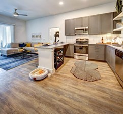 Living/Kitchen at Listing #291901