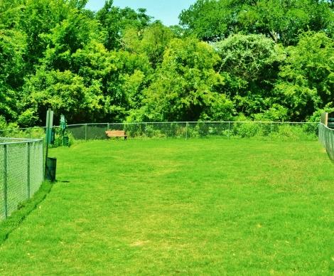 Dog Park at Listing #135812
