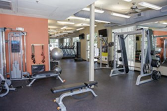 Fitness at Listing #154069