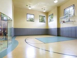 Basketball at Listing #144111