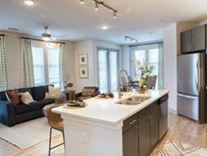 Living/Kitchen at Listing #294878