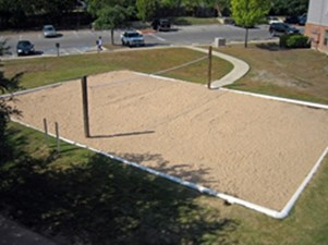 Volleyball at Listing #140661