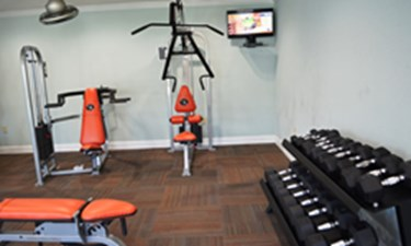 Fitness at Listing #138592