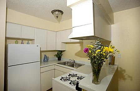 Kitchen at Listing #140187