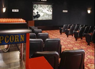 Theater at Listing #144593