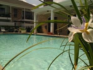 Pool at Listing #139707