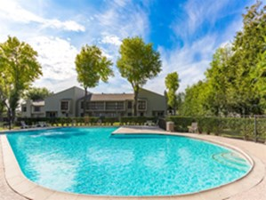 Pool at Listing #139446