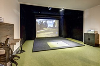 Golf Simulator at Listing #302973