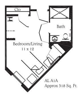 318 sq. ft. A1A floor plan