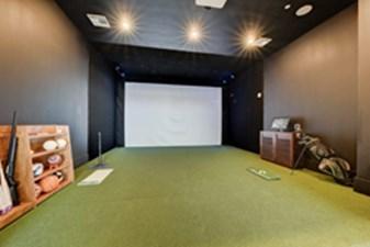 Golf Simulator at Listing #282798