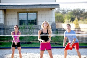 Volleyball at Listing #227996