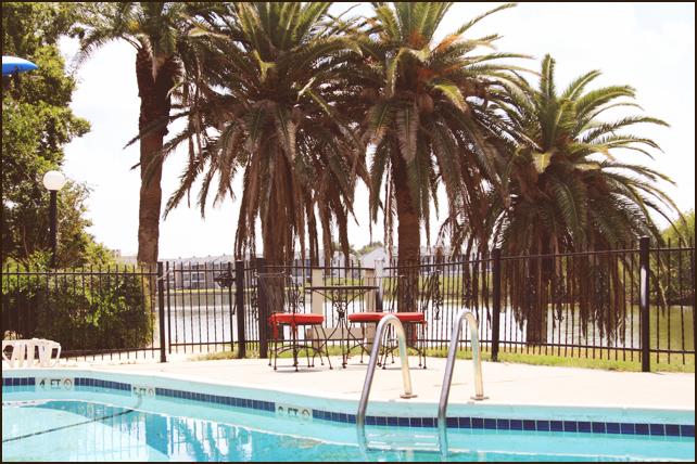 Pool at Listing #138432