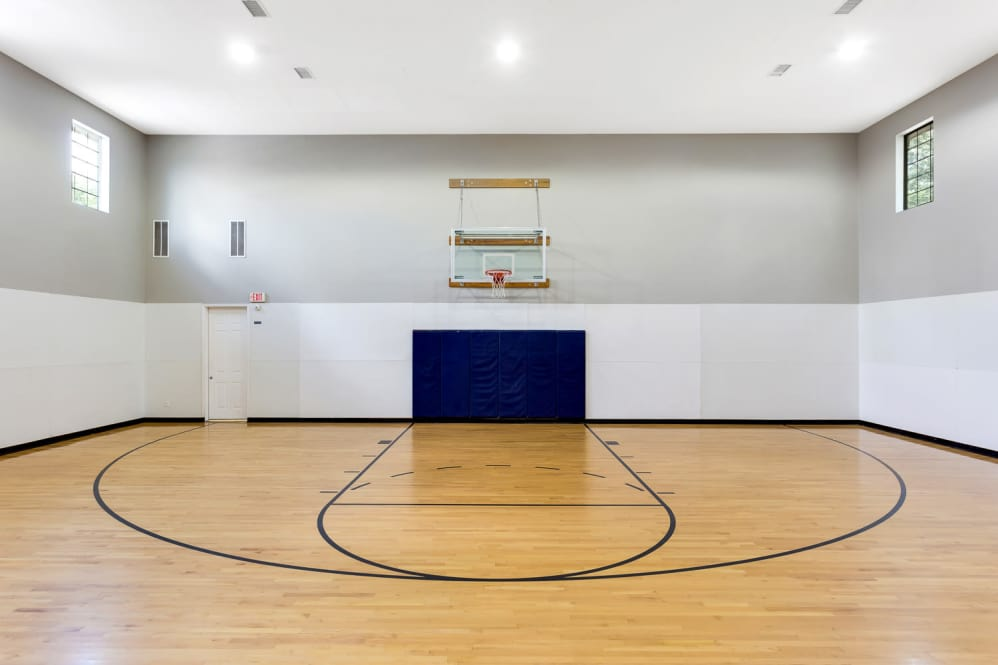 Basketball at Listing #141373