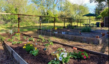 Garden at Listing #141383