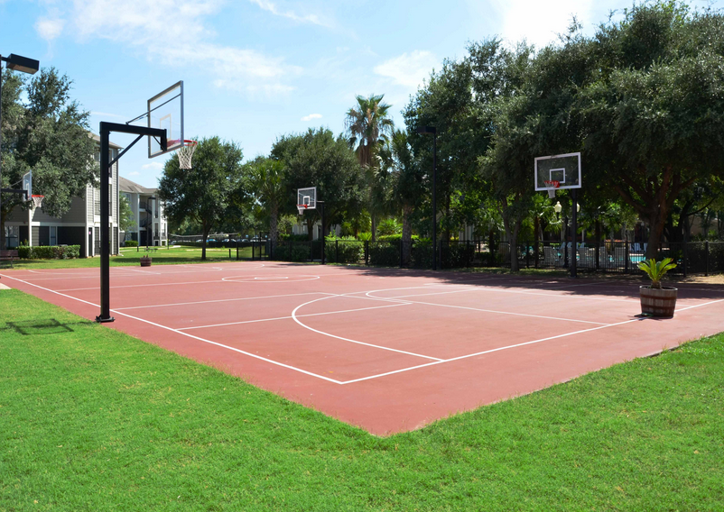 Basketball at Listing #140662