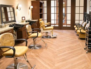 Salon at Listing #282916