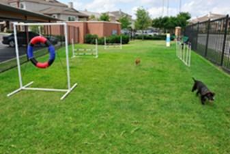 Dog Park at Listing #144673