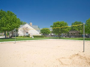 Volleyball at Listing #140728