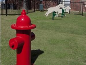 Dog Park at Listing #136590