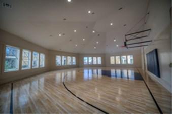 Basketball at Listing #226466