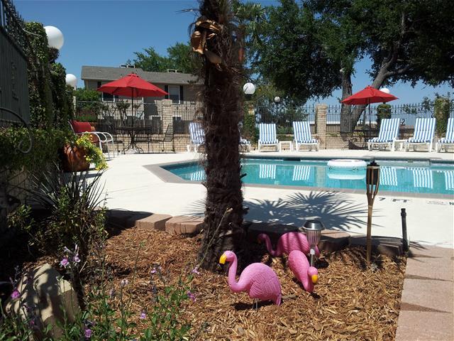 Pool at Listing #217848