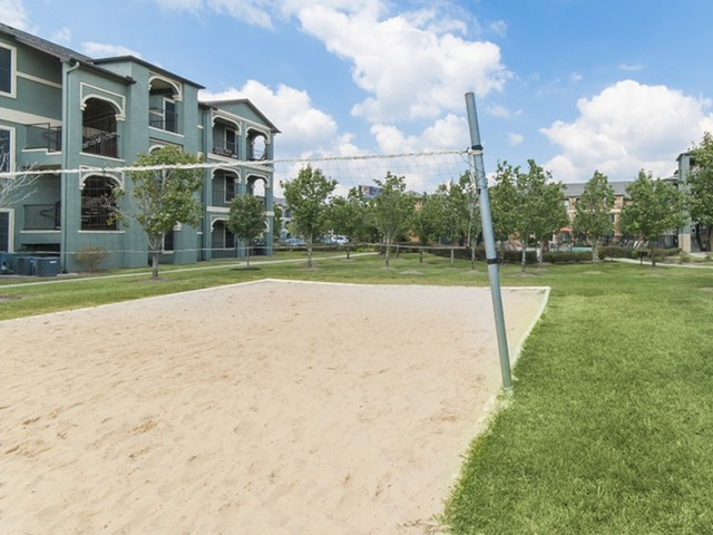 Volleyball at Listing #144173