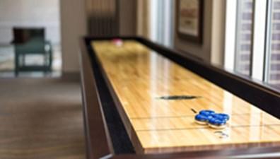 Shuffleboard at Listing #277727
