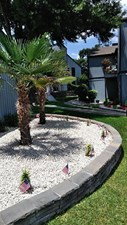 Courtyard at Listing #138991