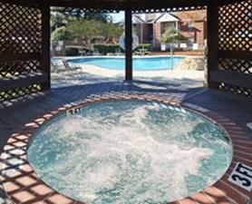 Hot Tub at Listing #136347