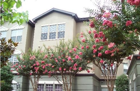 Exterior 3 at Listing #138044