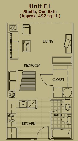 494 sq. ft. E1 floor plan