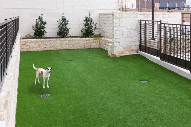 Dog Park at Listing #237323