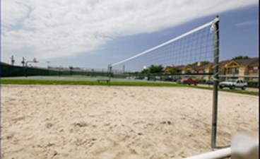 Volleyball at Listing #138314