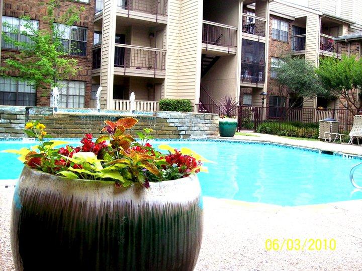 Pool at Listing #135835
