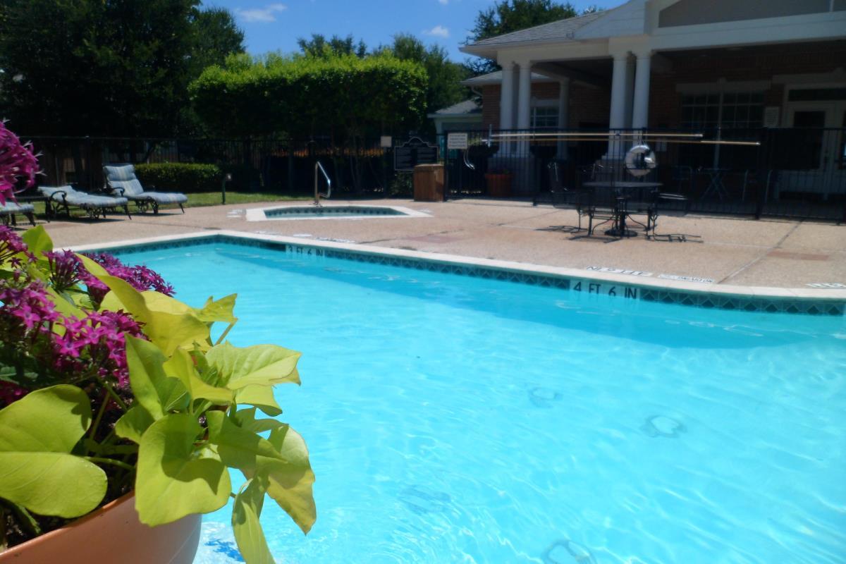 Pool at Listing #137992