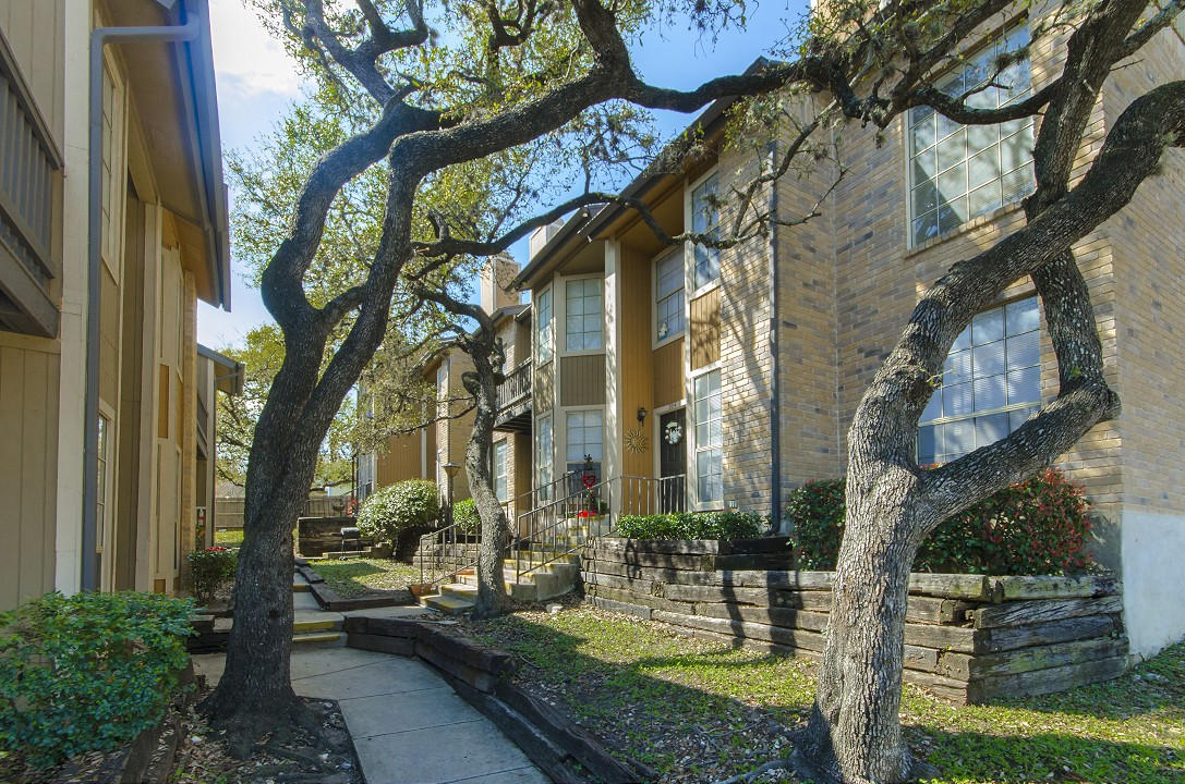 Broken Oak at Listing #141272