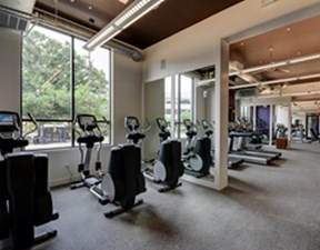 Fitness at Listing #228254