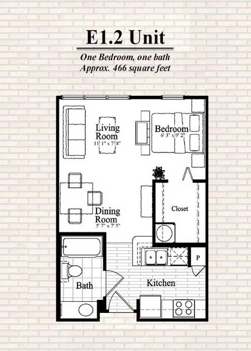 501 sq. ft. E1 floor plan
