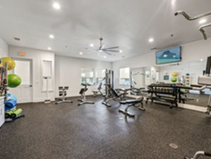 Fitness at Listing #298738