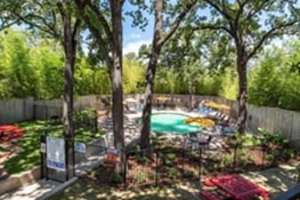 Pool at Listing #136866