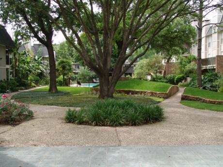 SunBlossom at Woodlake Apartments Houston, TX