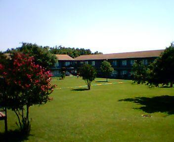 Courtyard Apartments Dickinson, TX