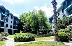 The Beverly Apartments San Antonio TX